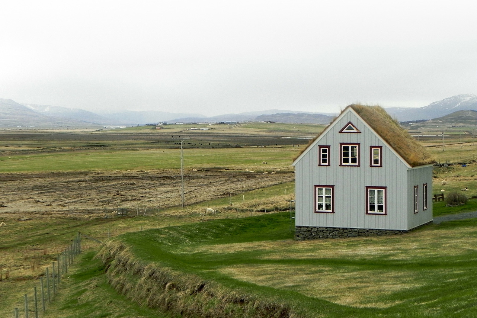 Green roofs can improve air quality inside buildings