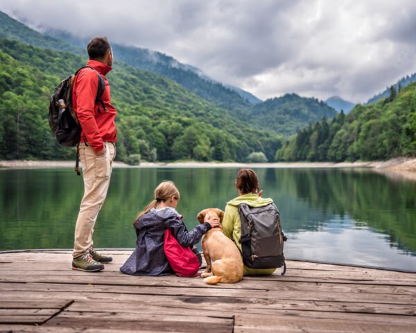 family sits on a dock near a lake with dog