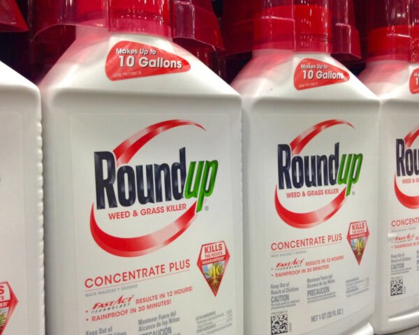 roundup weed killer sold in store