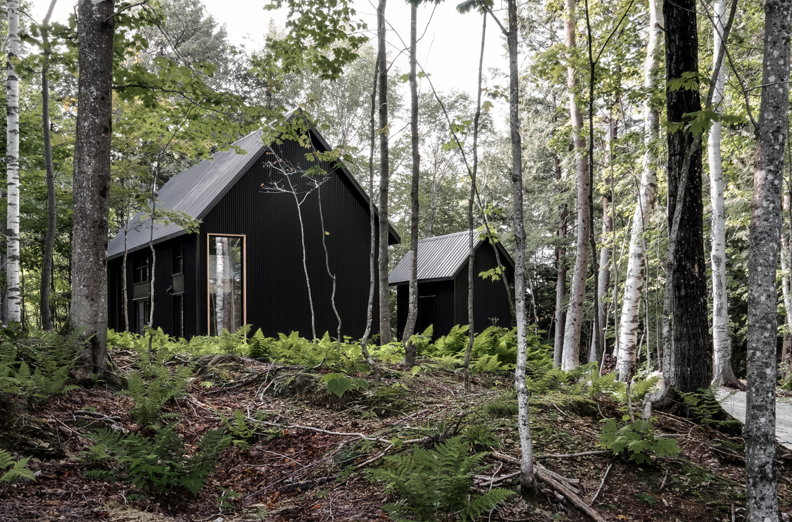 A pair of monochromatic cottages are tucked into the idyllic Canadian forestscape