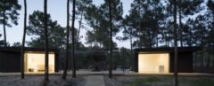 prefab charred timber black cabin surrounded by trees