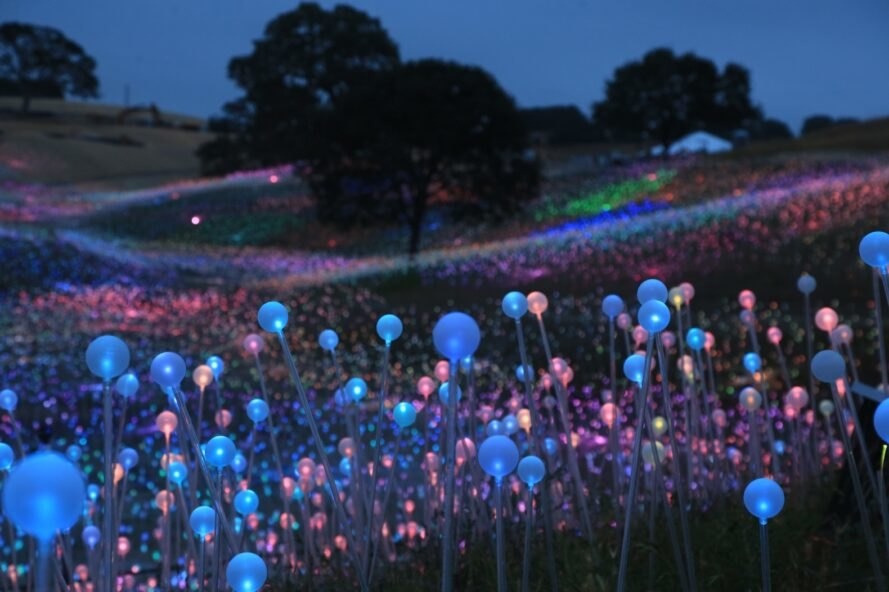 close-up of colorful solar-powered lights