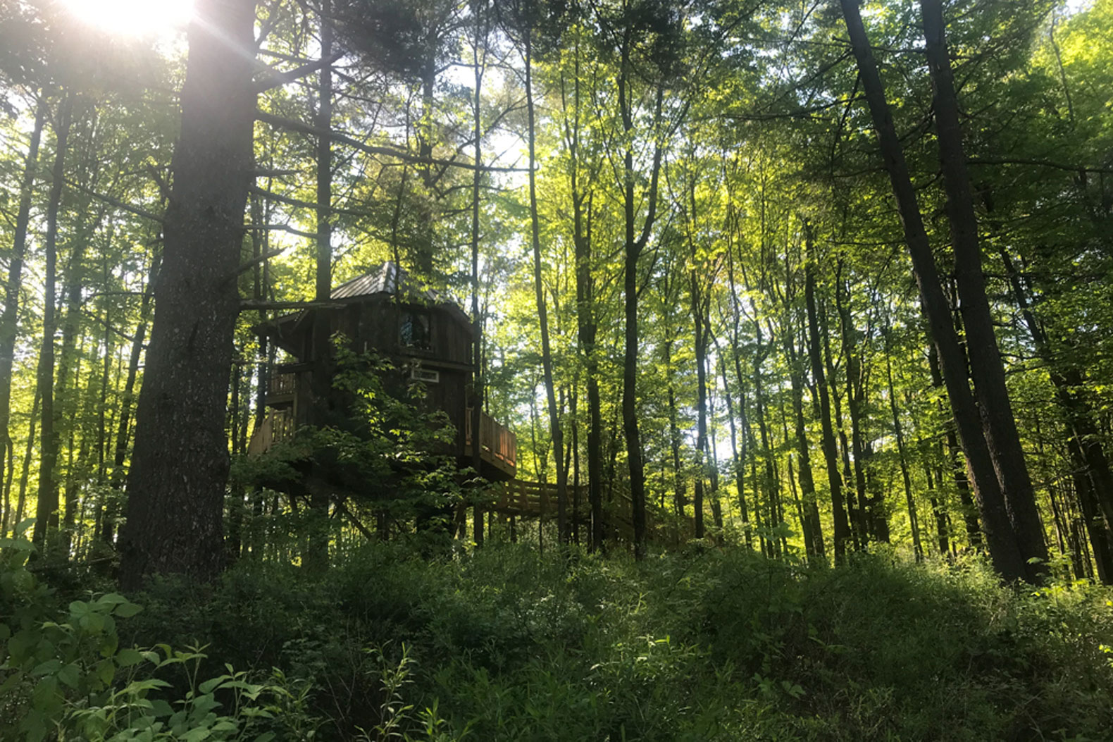 Inside The Mohicans: an Ohio treehouse empire