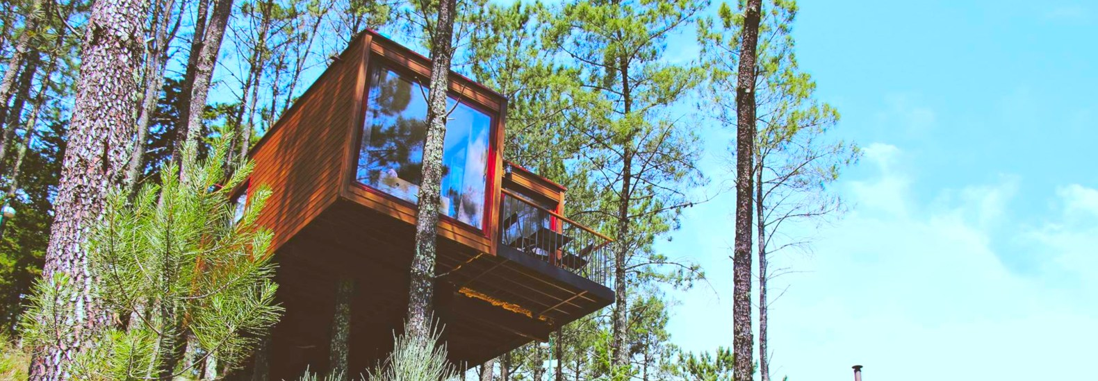 Treehouses made from shipping containers offer the ultimate glamping getaway in Portugal