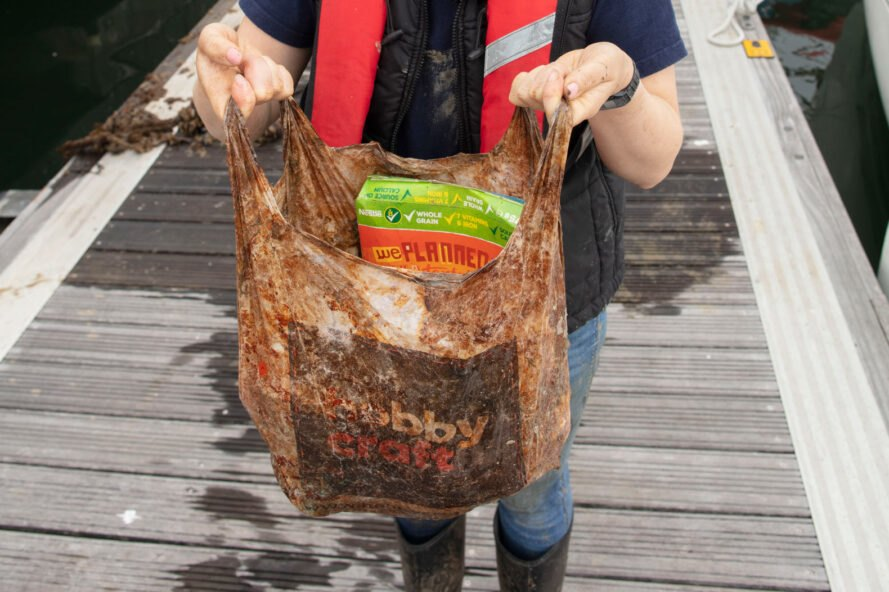 person holding old biodegradable plastic bag stuffed with groceries