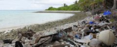 plastic covering beach of remote island