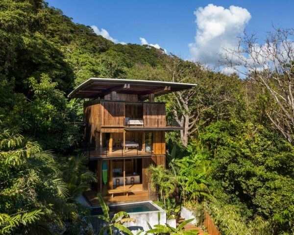 tall wood treehouse in a rainforest