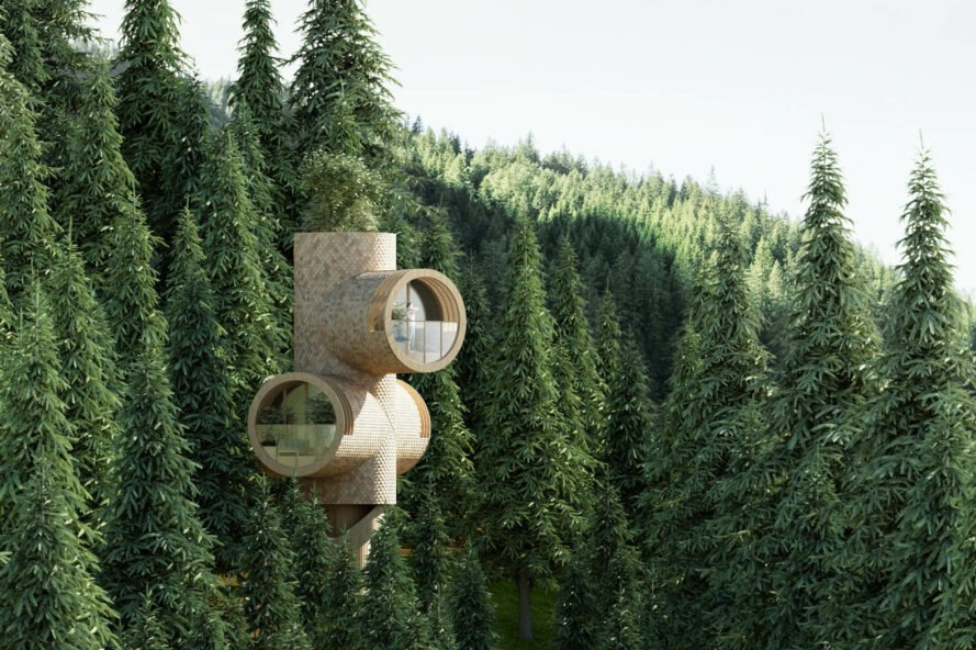 prefabricated treehouse surrounded by trees