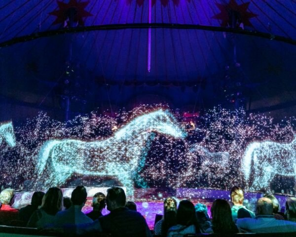 horse holograms at a circus