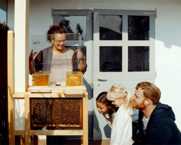 women lifts cover to wooden beekeeping device as children and a male adult see the bees