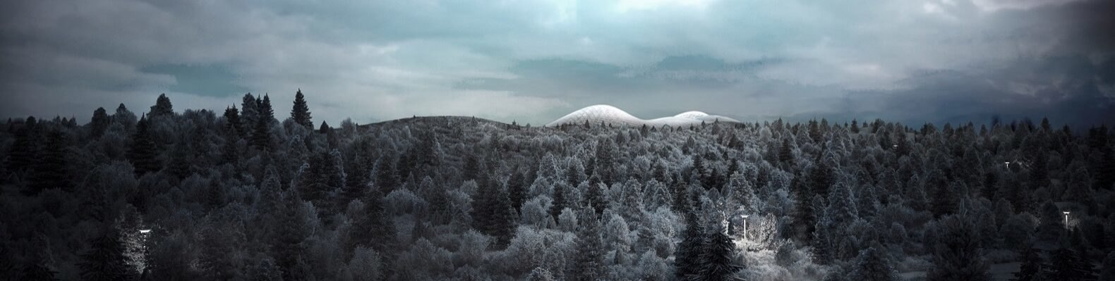 rendering white domes in forested area