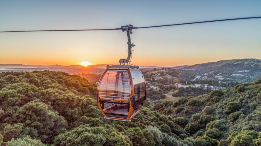 gondola over forested area at sunset