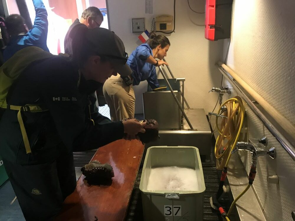 people rinsing bottom of shoes in a foot bath