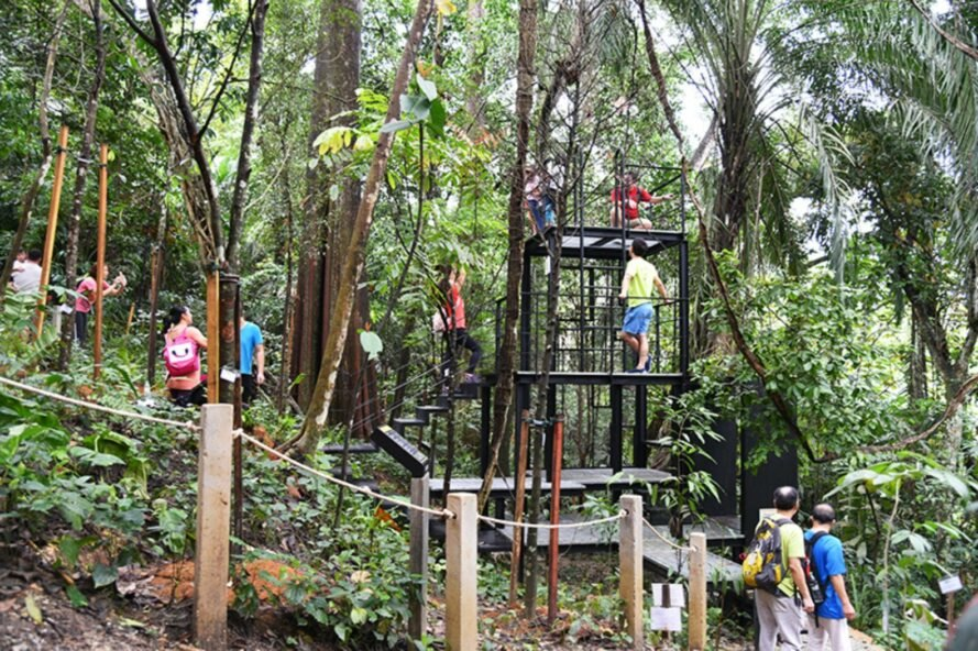 black steel framed treehouse with open platforms
