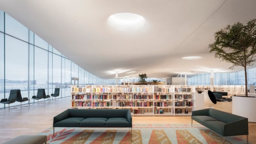library with shelves of book and dark couch