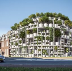 BIOMIMETIC ARCHITECTURE: Green Building in Zimbabwe Modeled