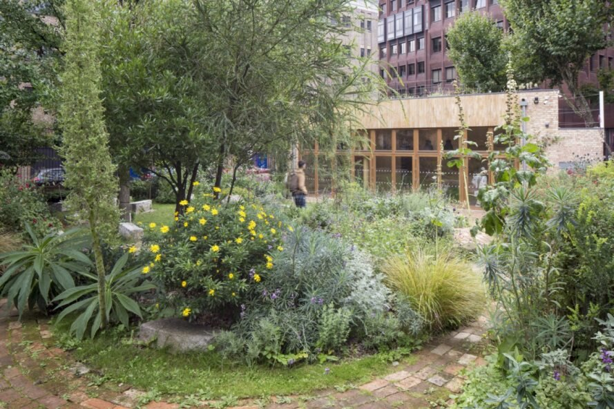 Green-roofed community center champions sustainable design in London