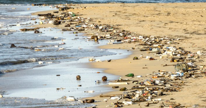 Scientists warn we are now entering the plastic age