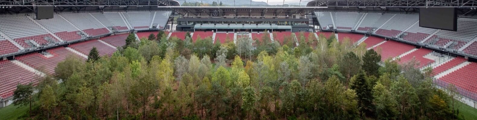 football stadium filled with trees
