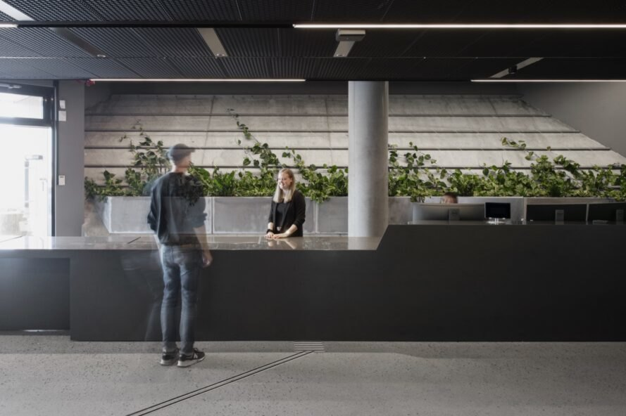 people at counter with plants against the wall