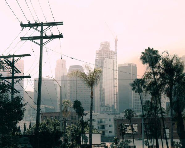 high-rises and palm trees shrouded in smog