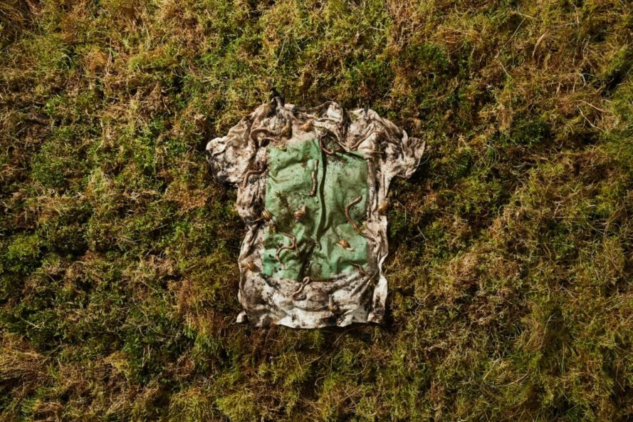 This T-shirt biodegrades eventually turns into fodder for worms