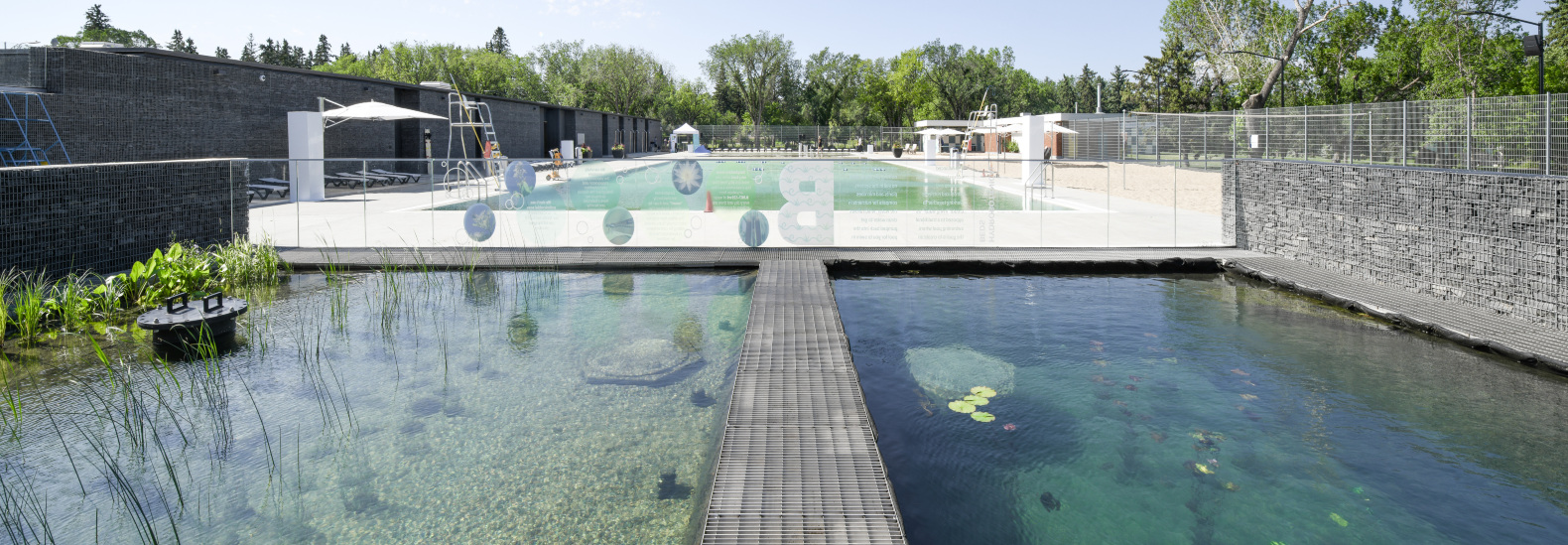 Canada unveils its first chemical-free public outdoor pool
