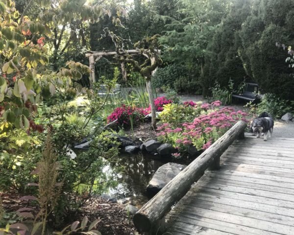 Recycled Botanical Garden In Seattle Brings Visitors Decades Of Joy