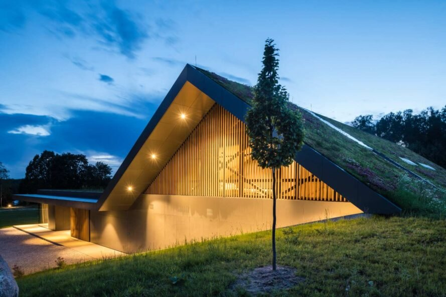 home with pitched roof covered in greenery