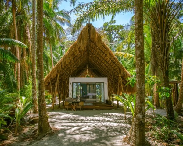 A-frame hut with thatched roof