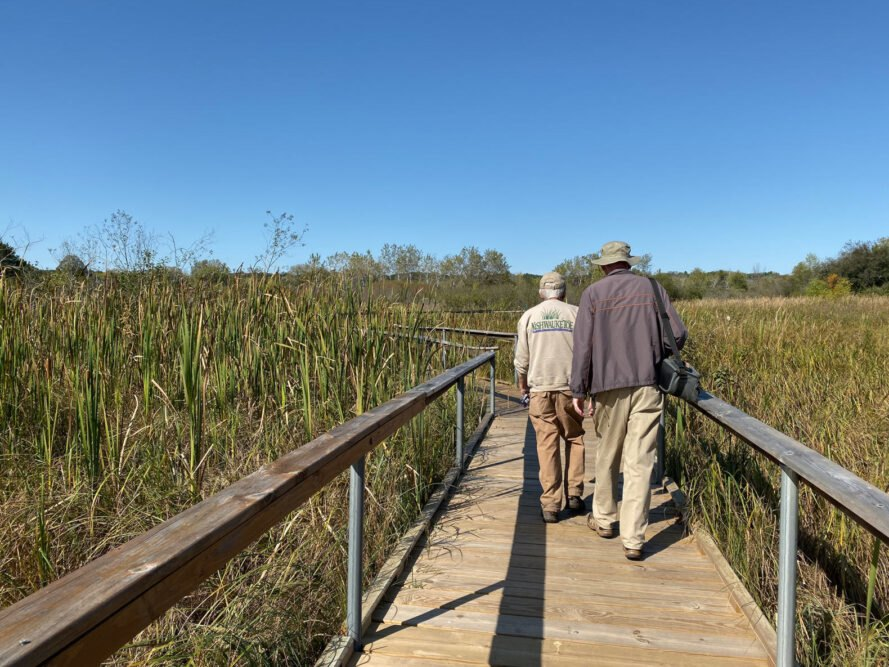 tour guides walking on small wood bridge over wetlands