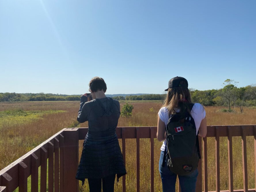 two people on observation deck looking out at wetlands
