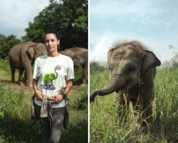 woman posing in T-shirt with elephants in background
