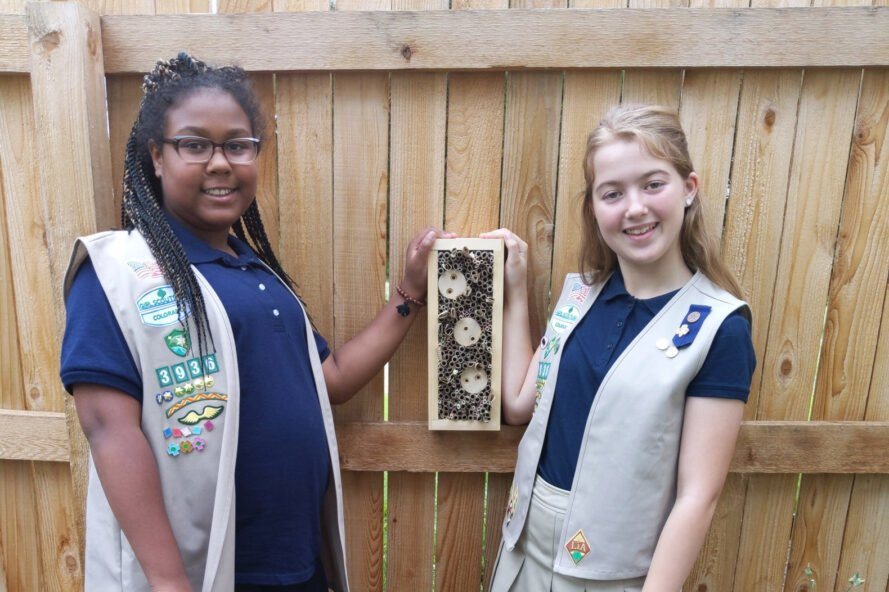 Girl Scouts build bee hotels to help save wild bees