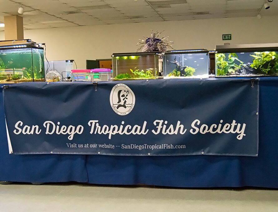 Signage of the San Diego Tropical Fish Society, on a section of the SDTFS Annual Fish Show