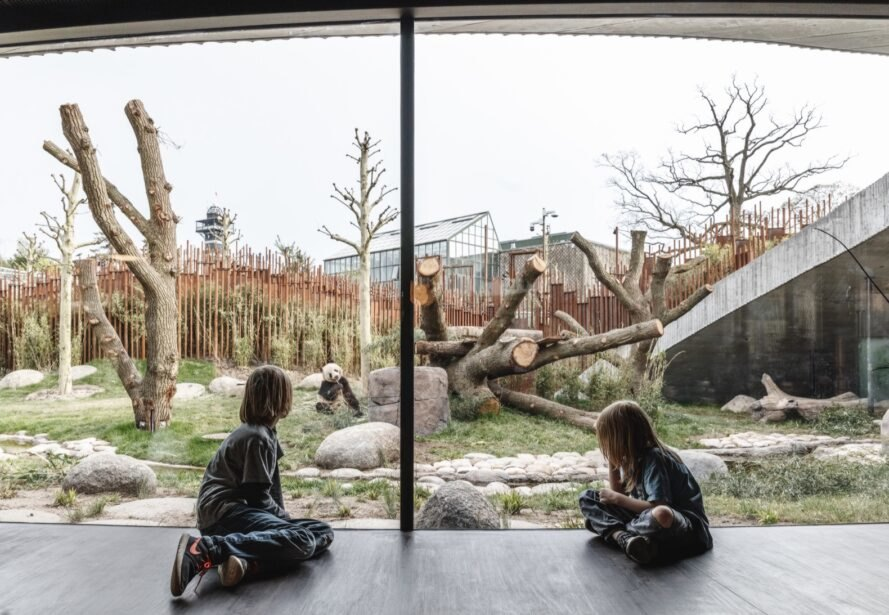 kids sitting beside glass wall looking at giant panda