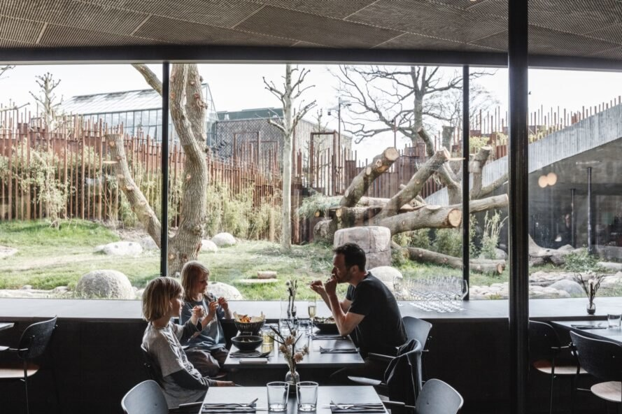 family eating lunch at table beside glass wall with view of giant panda exhibit at a zoo