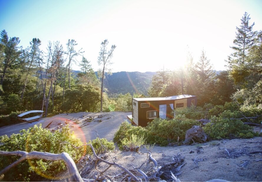 tiny home in the middle of forested landscape