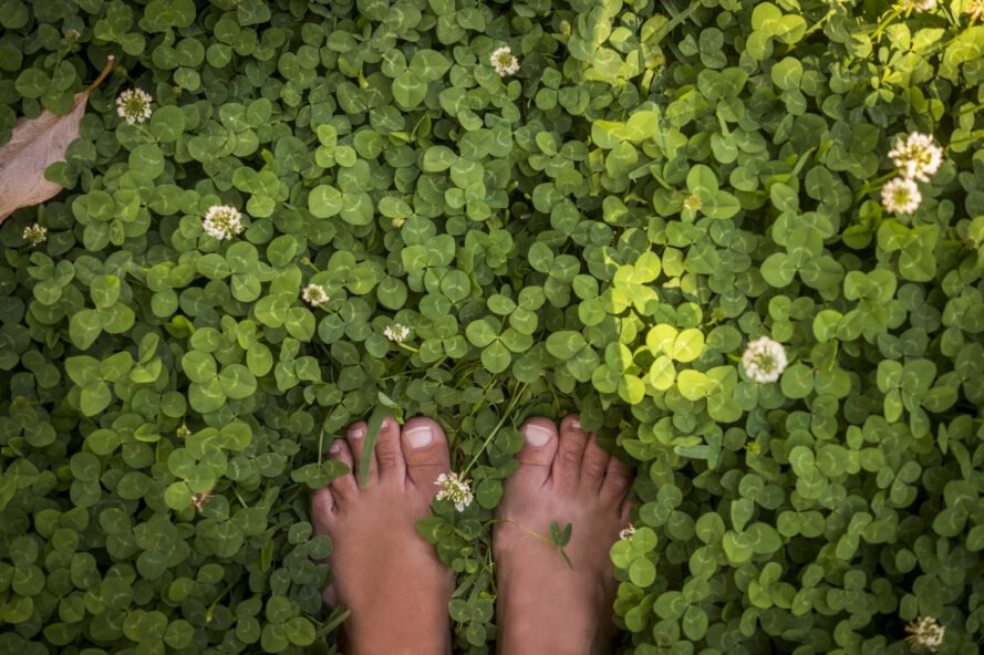 bare feet in field of clover