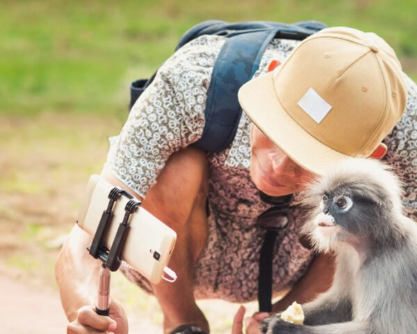 person taking selfie with a monkey
