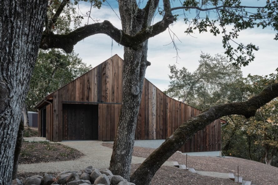 trees in front of old wood tack barn