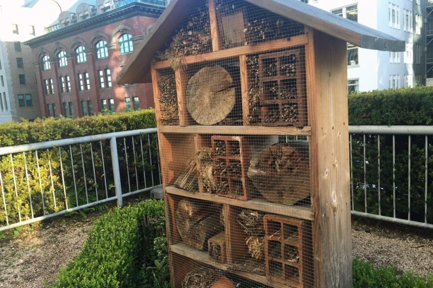 wooden bee hives on hotel deck