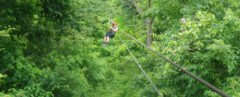 person zip lining in forest
