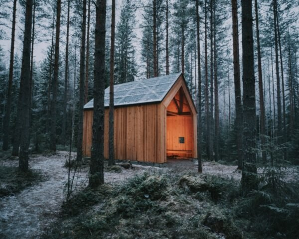 timber gabled shelter in a forest
