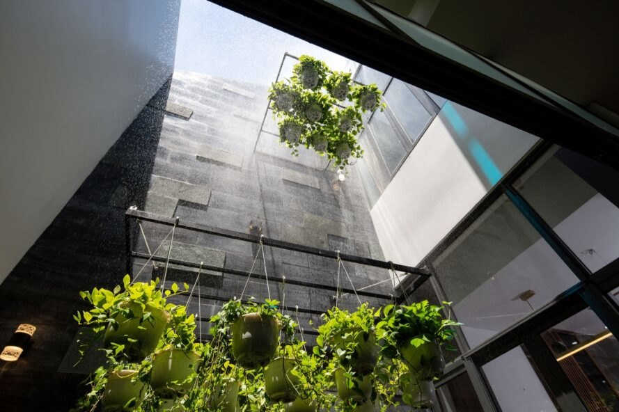 several hanging plants in an enclosed courtyard