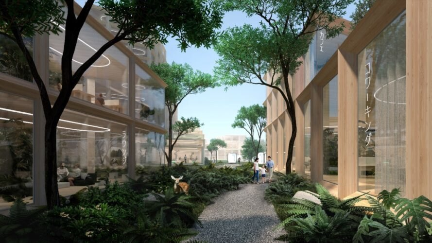 rendering of tree-lined walkway between wood buildings