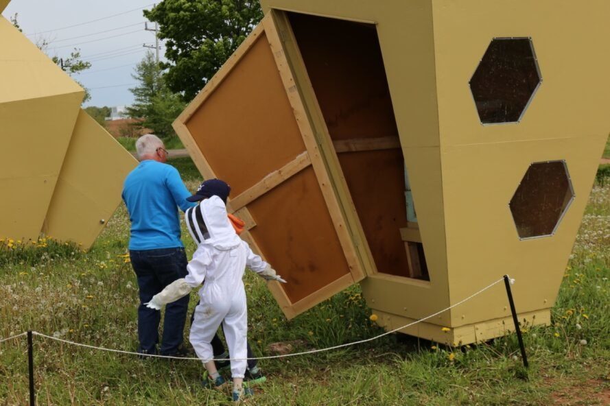 adult and child entering beehive sculpture