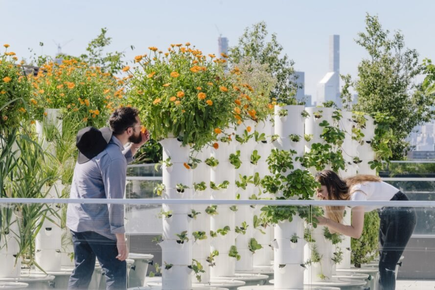 people enjoying a rooftop garden
