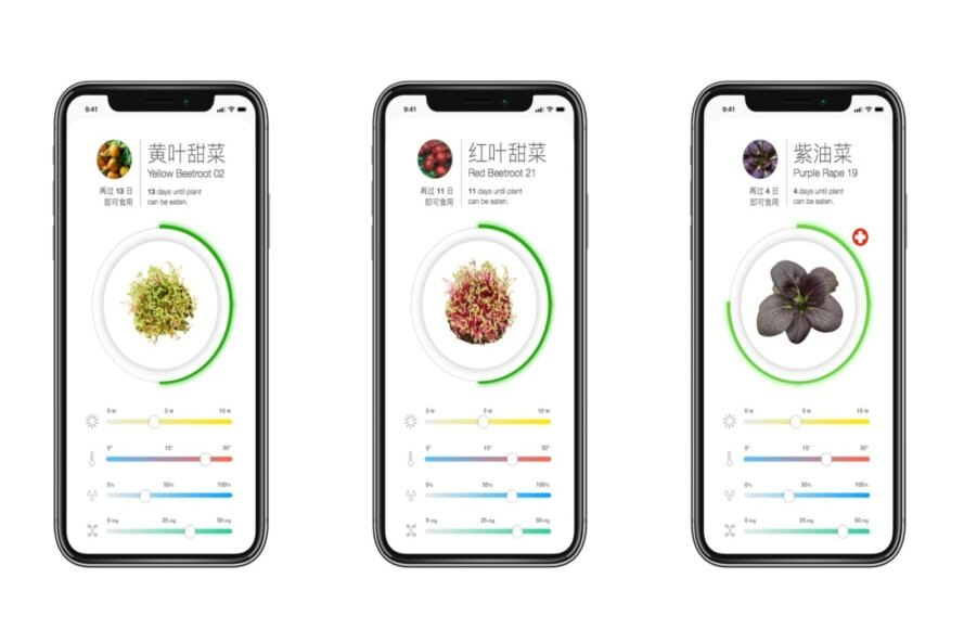three phone screens with images of plants growing