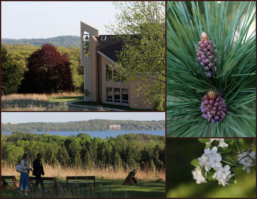 a collage of images: top right, a religious building in the center of the frame, surrounded by a green tree on the right and a red-purple tree on the left. hills are viewable in the distance. top left, closeup of a purple and green plant that grows on premises. bottom left, people walking through a prairie. bottom left, close up of a small white flower.